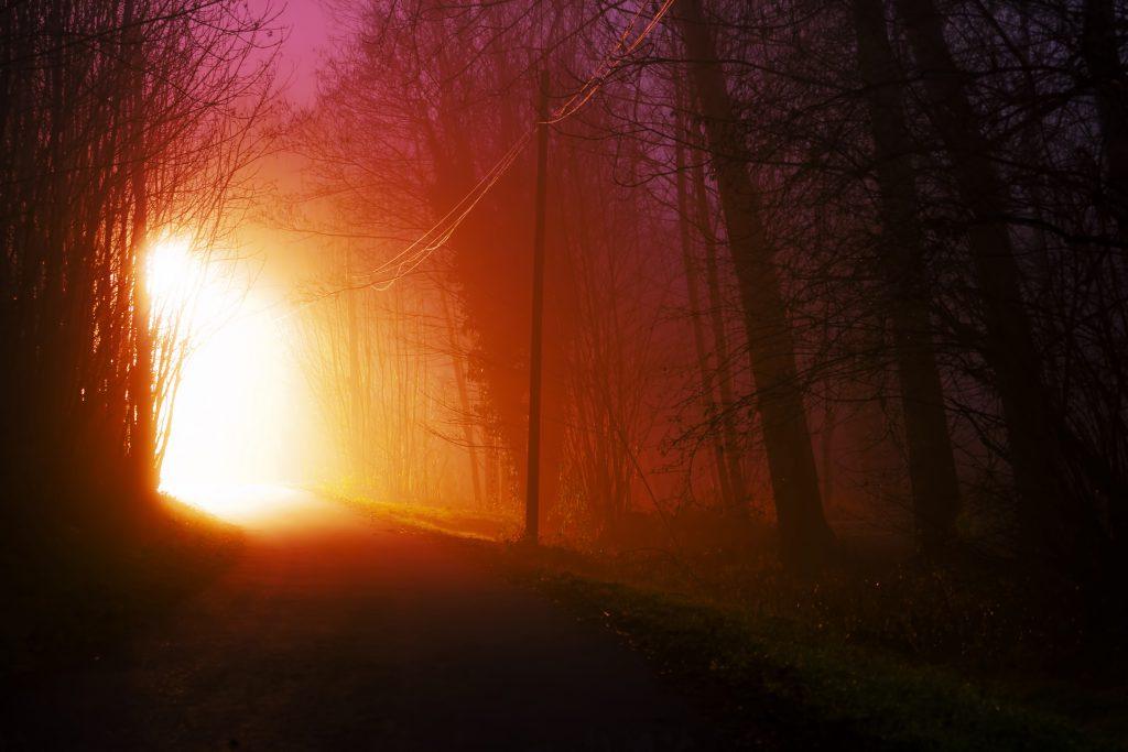 light-road-nature-night